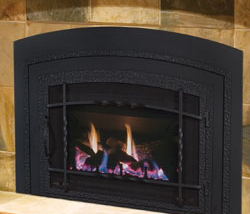 34-DVI34N Gas Insert by Archgard Fireplace Products