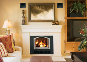 BIS Panorama™ Wood Burning Fireplace by Lennox Hearth Products